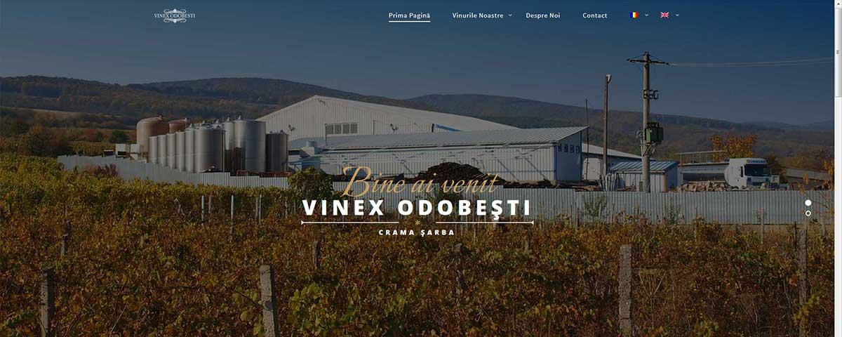 Creare site web & optimizare site: portofoliu - webdesign (vinexodobesti)